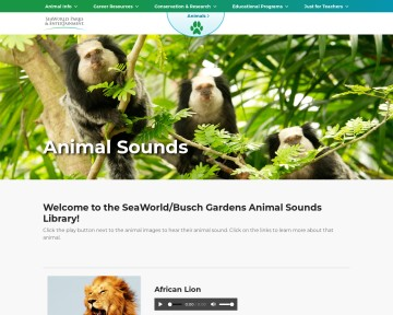 Animal Sounds Library