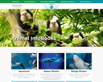 Animal Infobooks