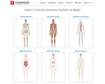 Human Anatomy On-line
