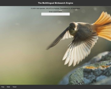 The Multilingual Birdsearch Engine